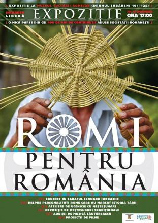 expozitia romi pentru romania